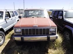 1988 Cherokee Laredo SUV by Jeep in Pete's Dragon