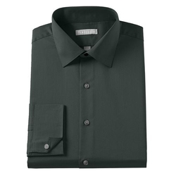 Wrinkle-Free Spread-Collar Dress Shirt by Van Heusen in Regression