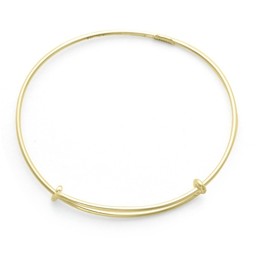 Plain, Thick Expandable Wire Bangle Bracelet by Alex and Ani in Jem and the Holograms