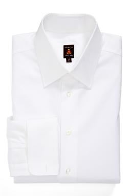 Regular Fit Solid Dress Shirt by Robert Talbott in Unbroken