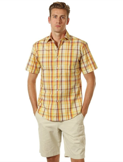 Plaid Oxford Short Sleeve Shirt by Fhnlove in American Pie