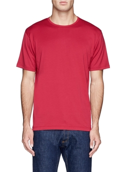 Basic Cotton T-Shirt by Sunspel in Ride Along 2