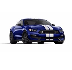 Mustang Shelby GT350 Coupe by Ford in Logan Lucky