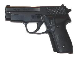 P228 by SIG Sauer in A Walk Among The Tombstones
