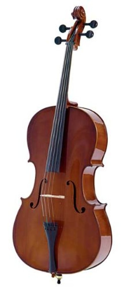 Allegro Cello by Palatino in If I Stay