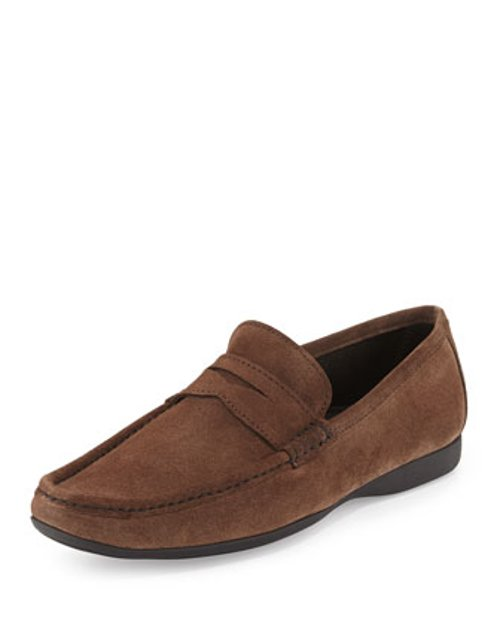 Slip-On Suede Penny Loafer Shoes by Bruno Magli in Birdman