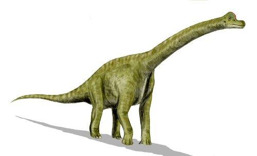 Brachiosaurus by Seth Engstrom & Dean Sherriff (Concept Artist) in Jurassic World
