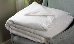 Down Blanket by Westin Heavenly in Couple's Retreat