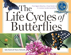 The Life Cycles of Butterflies Book by Judy Burris (Author) in Before I Wake