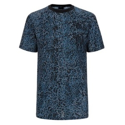 Foil-Print T-Shirt by Lanvin in Empire