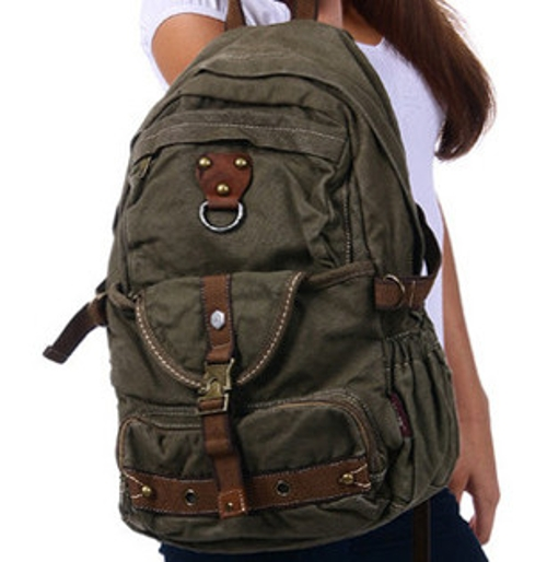 Canvass Heavy Duty School Backpack by Ser Bags in Man of Tai Chi