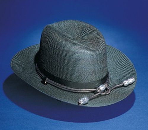 Straw Sheriff Style by Stratton Hats in Need for Speed