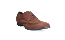 Montgomery Wing-Tip Oxford Shoes by Cole Haan in Why Him?