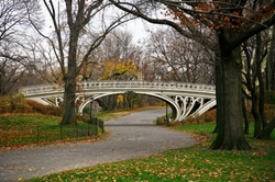 New York City, NewYork by Gothic Bridge(Central Park) in Collateral Beauty