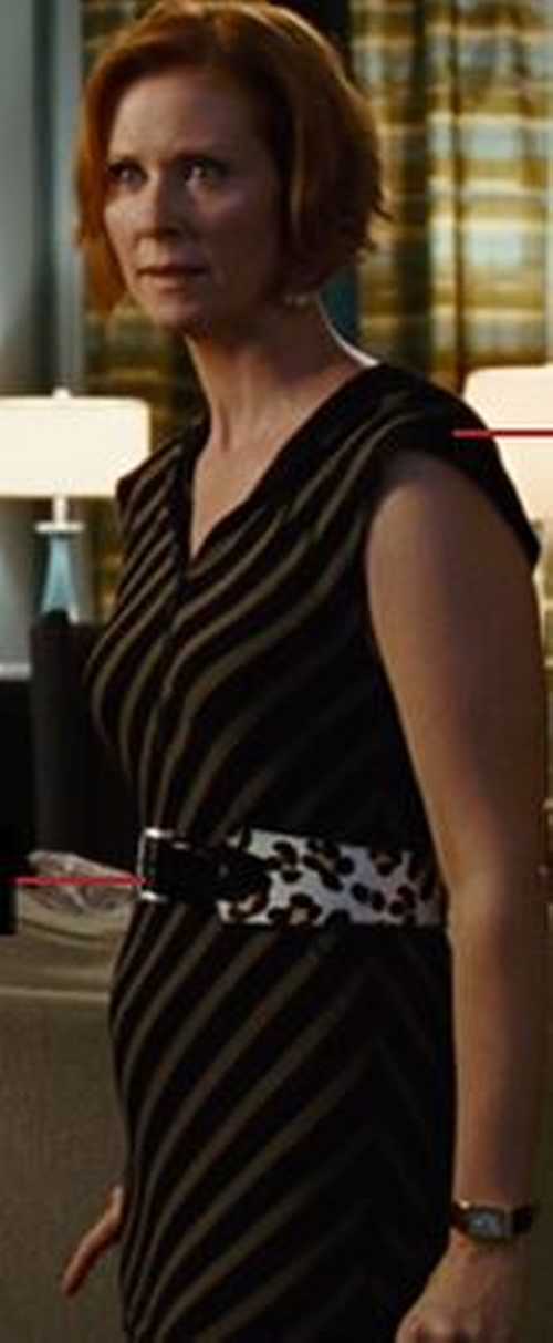 Striped Sheath Dress by Sonia Rykiel in Sex and the City