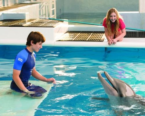 Custom Made Junior Short Sleeve Rashguard (Nathan Gamble) by Ocean Tec in Dolphin Tale 2