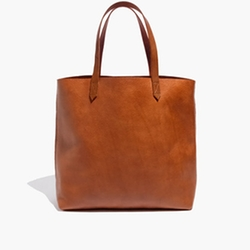 Transport Tote by Madewell in Jurassic World