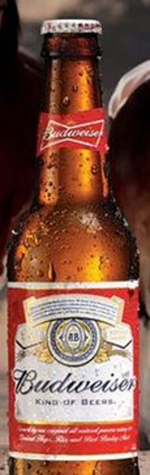 King of Beers by Budweiser in Begin Again