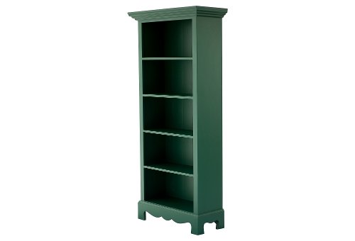 Beach House Bookcase, Green by Sweet Elle for Bradshaw Kirchofe in That Awkward Moment