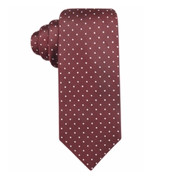 Bedford Slim Dot Tie by Ryan Seacrest Distinction in Modern Family