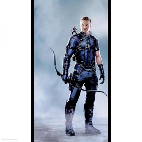 Custom Made Hawkeye Suit by Judianna Makovsky (Costume Designer) in Captain America: Civil War