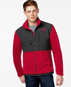Polartec Denali Fleece Jacket by The North Face in Quantico
