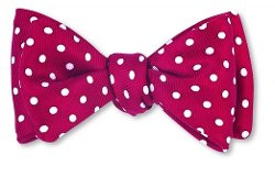 Men's Windsor Dot Bow Tie by R. Hanauer in The Best of Me