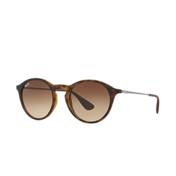 RB4243 Sunglasses by Ray-Ban in The Blacklist