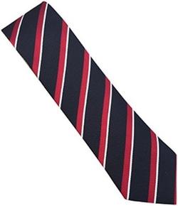 Stripe Silk Tie by The Haute Couture in Legend