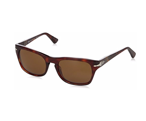 Tortoise Wayfarer Sunglasses by Persol in Mad Dogs -  Looks