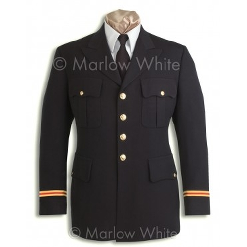 Army Service Uniform by Marlow White in Absolutely Anything