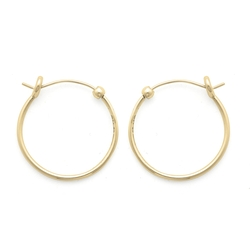 Small Perfect Hoop Earrings by Alex and Ani in Modern Family