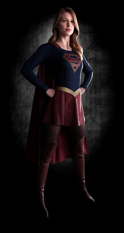 Custom Made Supergirl Costume by Colleen Atwood (Costume Designer) in Supergirl