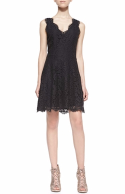Nikolina Sleeveless Lace A-Line Dress by Joie in Friends From College