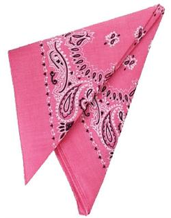 "Cowboy Cowgirl Costume 19"" Bandana Head Scarf by Rhode Island Novelty in Blended"