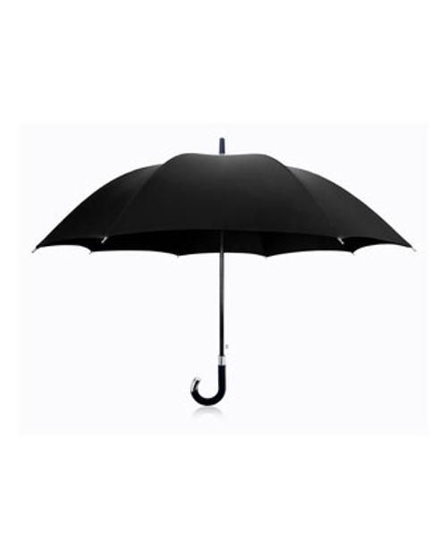 Elite Cane Umbrella by Davek in Into the Storm