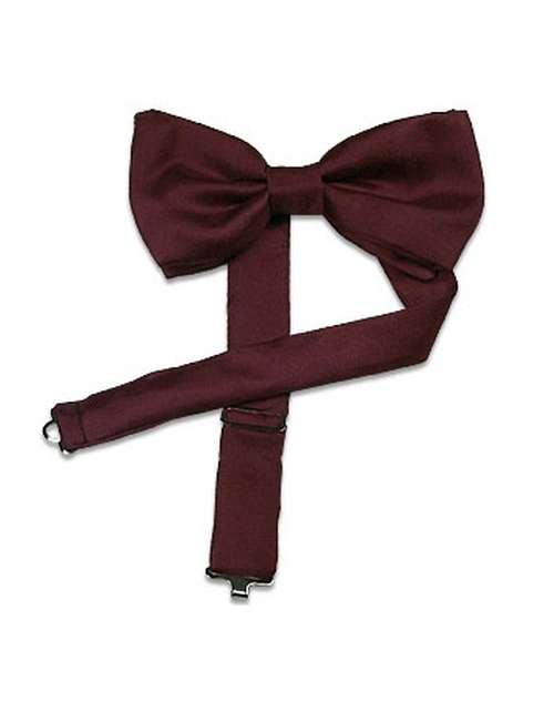 Solid Silk Pre-Tied Bowtie by Forzieri in The Flash