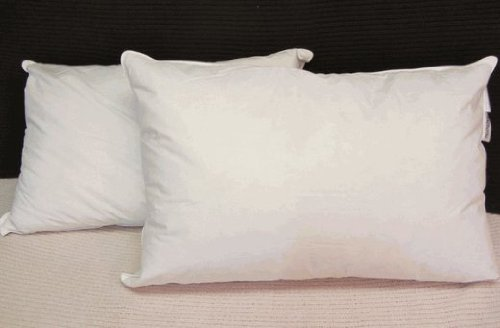 Hotel Feather and Down Queen Size Pillow Set by Pillowtex in Pitch Perfect 2