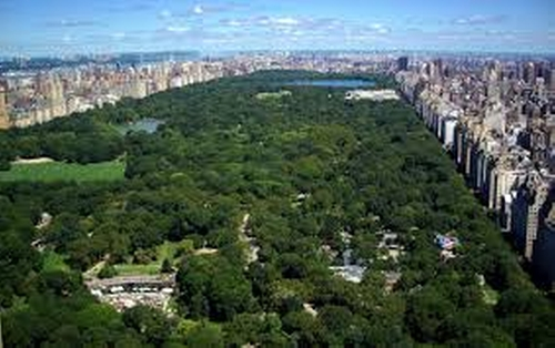 Central Park New York City, New York in The Proposal