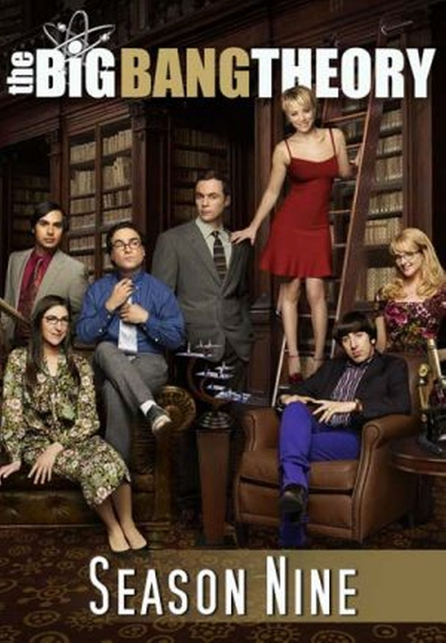 The Big Bang Theory The Mystery Date Observation poster