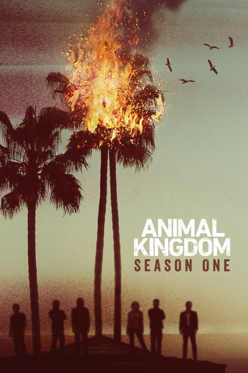Animal Kingdom Pilot poster